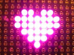 10 mm pink LEDs